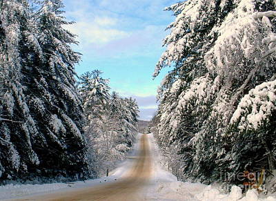 Photograph - Merry Christmas,happy Holidays by Elfriede Fulda