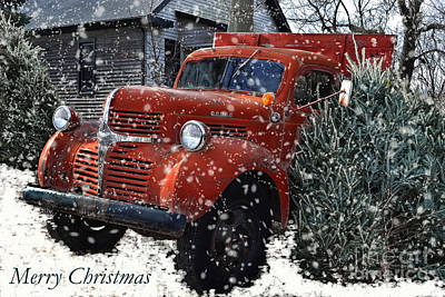 Photograph - Merry Country Christmas by Amy Lucid