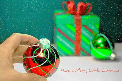 Photograph - Merry Little Christmas by Diana Angstadt