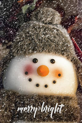 Photograph - Merry Snowman by Pamela Williams