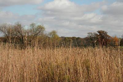 Photograph - Merwin Prairie Autumn I by Dylan Punke