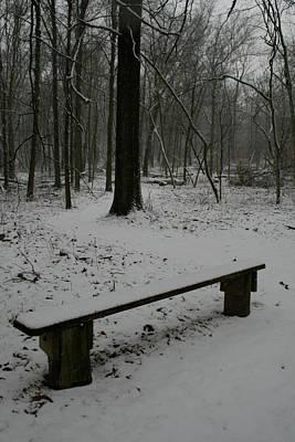 Merwin Winter Bench Art Print by Dylan Punke