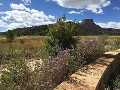 Photograph - Mesa Verde by Anne Sands