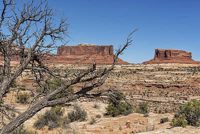 Photograph - Mesas Near Moab by Belinda Greb