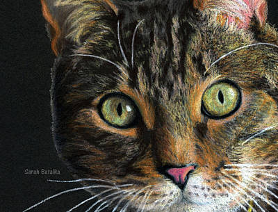 Kitty Drawing - Mesmer Eyes Detail  by Sarah Batalka