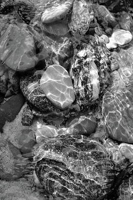 Photograph - Mesmerized By The Creek Stones Black And White by Kathi Mirto