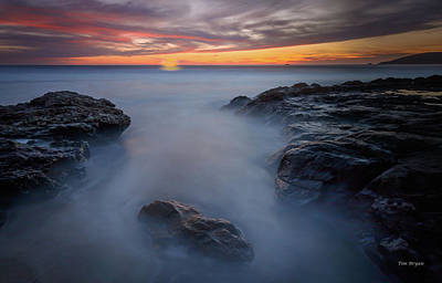 Photograph - Mesmerized by Tim Bryan
