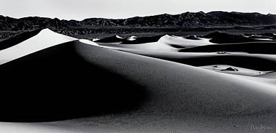 Photograph - Mesquite Dunes Dv by Nick Borelli
