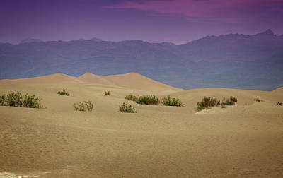 Photograph - Mesquite Dunes II by Ricky Barnard