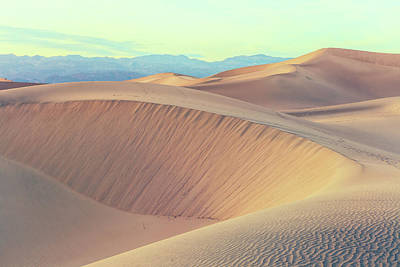 Photograph - Mesquite Dunes by Jonathan Nguyen