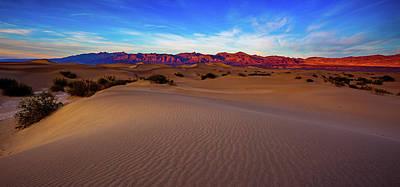 Photograph - Mesquite Dunes by Nick Borelli