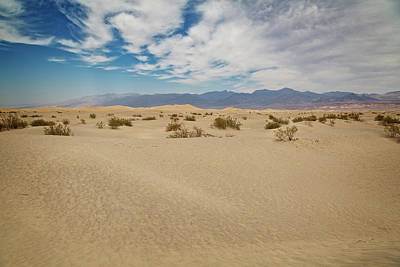 Photograph - Mesquite Dunes by Ricky Barnard