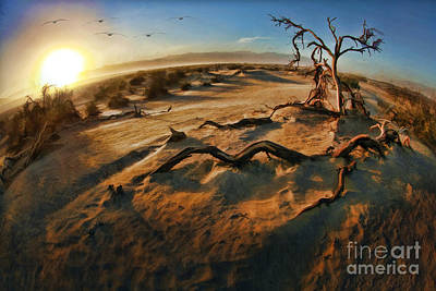 Photograph - Mesquite Dunes Tree Death Valley  by Blake Richards