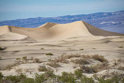 Photograph - Mesquite Flat Sand Dune by Michael Bessler