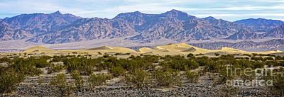 Mesquite Flat Sand Dunes Art Print by Charles Dobbs