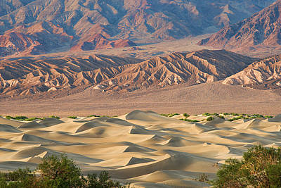 Photograph - Mesquite Flat Sand Dunes - Death Valley by Dana Sohr