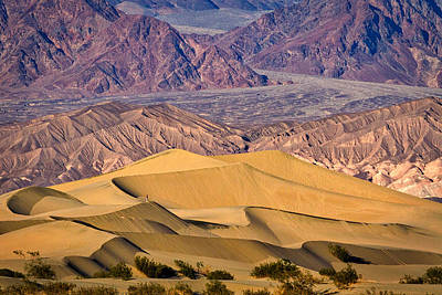 Photograph - Mesquite Flat Sand Dunes - Death Valley by Stuart Litoff
