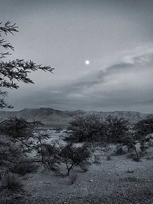 Photograph - Mesquite Moonrise No. 1-2 by Sandy Taylor