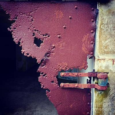 Photograph - Metal Door Ode To Sam by Suzanne Lorenz