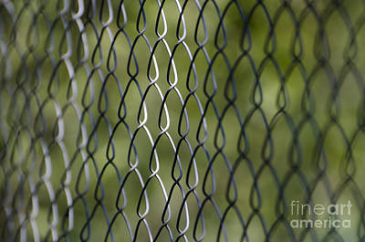 Metal Fence Photograph - Metal Fence by Mats Silvan