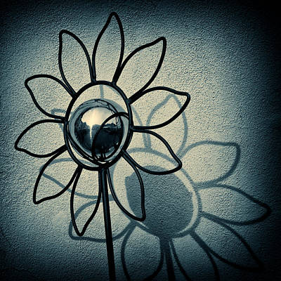 Black And White Horse Photography - Metal Flower by Dave Bowman