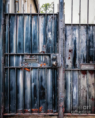 Photograph - Metal Gates by Kathleen K Parker