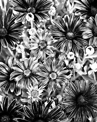 Photograph - Metal Petals by Lana Trussell