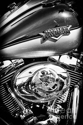 Custom Harley Davidson Photograph - Metalflake Harley by Tim Gainey