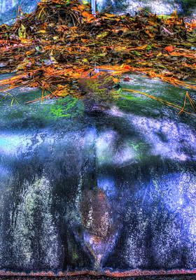 Photograph - Metallic Fall Color 1 by Douglas Barnett