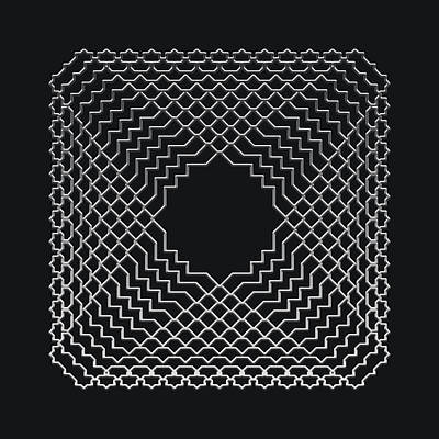 Metallic Lace Avi Art Print by Robert Krawczyk