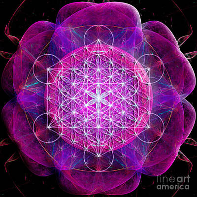 Digital Art - Metatron's Cube On Fractal Pletals by Alexa Szlavics