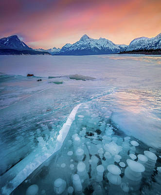 Photograph - Methane Bubbles // Abraham Lake, Alberta  by Nicholas Parker