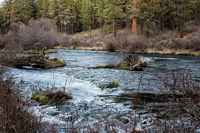 Photograph - Metolius River by Belinda Greb