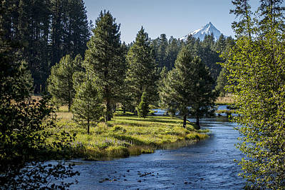 Photograph - Metolius Springs Oregon by Mary Lee Dereske