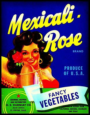 Art Print featuring the photograph Mexicali Rose Vintage Vegetable Crate Label by Peter Gumaer Ogden