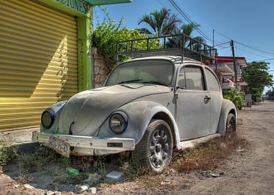 Photograph - Mexican Beetle by Doug Matthews