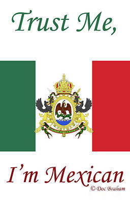 Mixed Media - Mexican Flag by Doc Braham