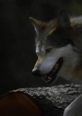 Canines Digital Art - Mexican Grey Wolf Da by Ernie Echols