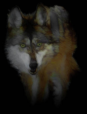 Digital Art - Mexican Grey Wolf Da2 by Ernie Echols