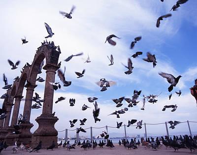 Mexican Pigeon Ruins Art Print by Benjamin Garvey