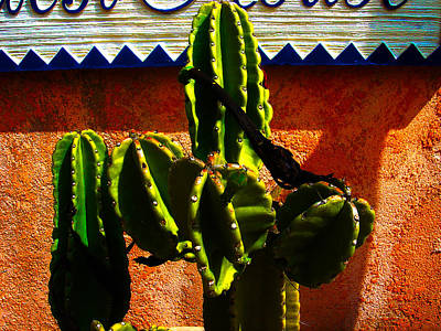 Architectural Photograph - Mexican Style  by Susanne Van Hulst