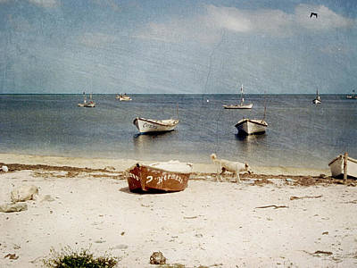 Photograph - Mexico Beach by Charles McKelroy