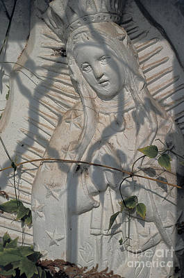 Photograph - Mexico Cemetery - Virgin Of Guadalupe by Sharon Hudson
