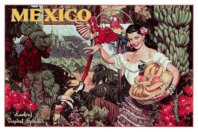 Senorita Photograph - Mexico Land Of Tropical Splendor C. 1950 by Daniel Hagerman