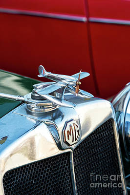 Automobile Hood Photograph - Mg Airplane Hood Ornament  by Tim Gainey