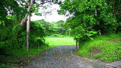 Photograph - Mi Valle En El Yunque by Walter Rivera Santos