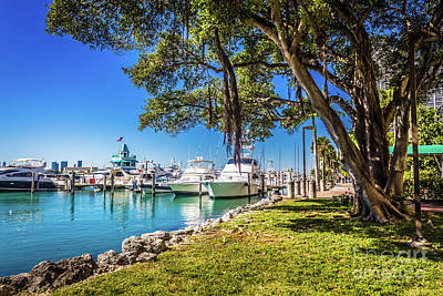 Photograph - Miami Beach Marina 4526 by Carlos Diaz