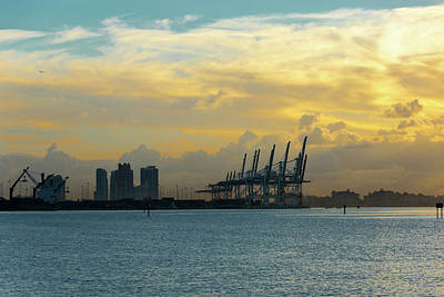 Photograph - Miami Dawn by Steven Richman