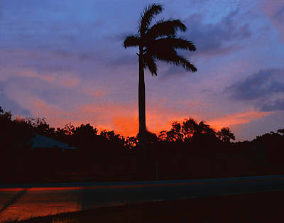 Photograph - Miami Sunset by Roger Bester