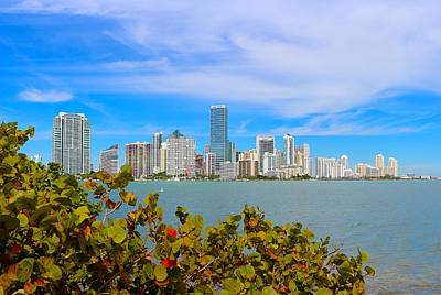 Miami Skyline Photograph - Miami Waterfront 6807 by Olivia Novak